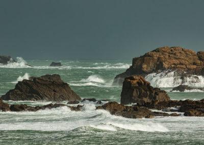 Paysage Bretagne - Plougasnou (3)