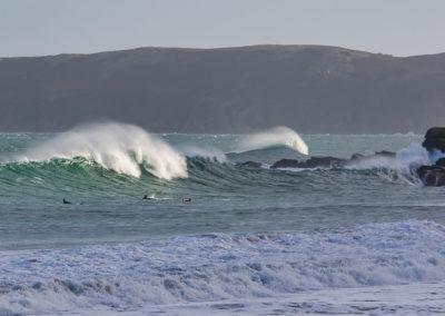 surf (10)