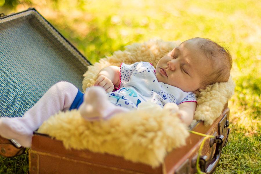 Photographie de bébé dans une valise et peau de mouton