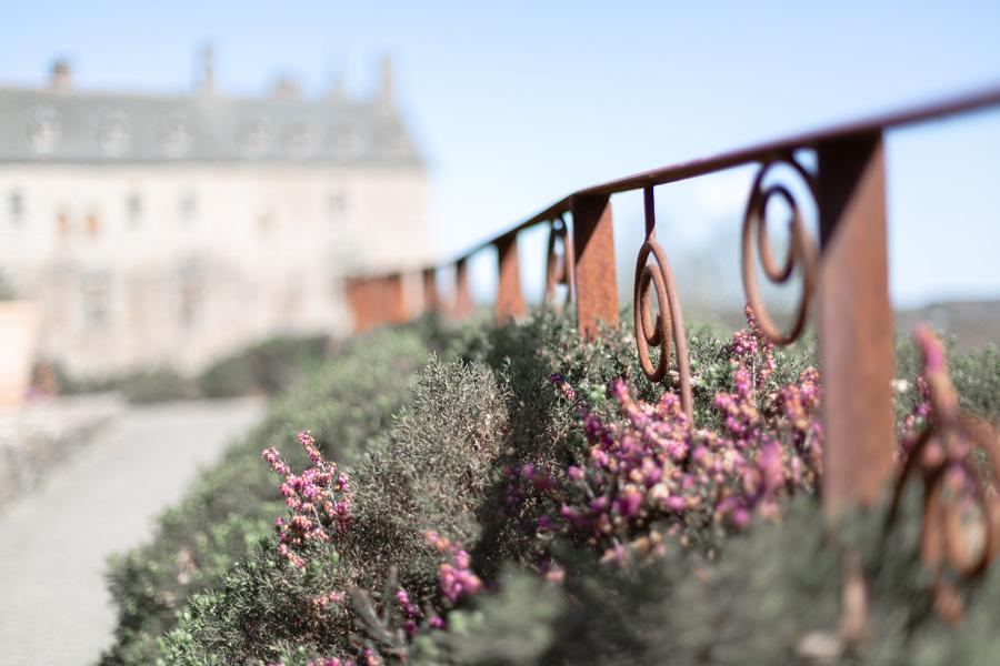 photographie-mariage-jardin-champetre-chateau-lannion-bretagne