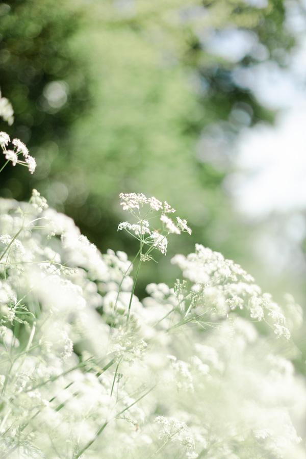 photographie-mariage-champetre-floral-lannion-bretagne