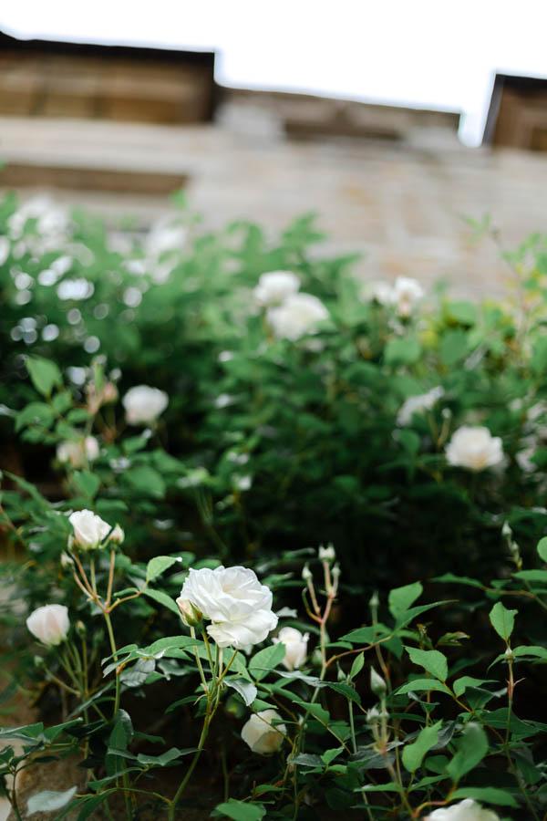 rose blanche mariage chateau de kergrist