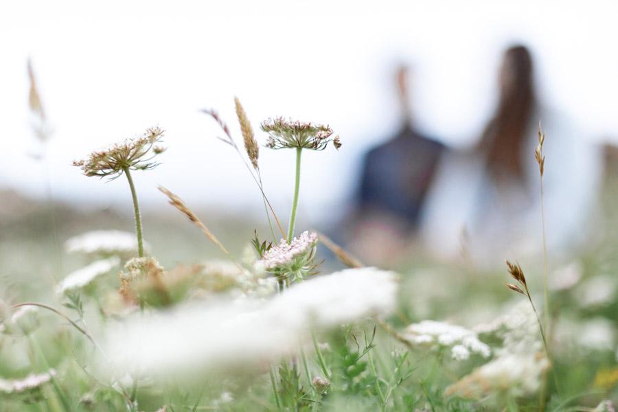 Photographie grossesse famille au gouffre de Plougrescant fleur sauvage